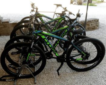 Mountain Bike Professionali gratuite e Tour dei migliori percorsi di Pesaro