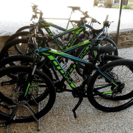 L'hotel Villa Cattani Stuart ofre servizio gratuito di noleggio mountain bike e guida turistica