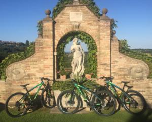 Nuove mountain bike a disposizione degli ospiti per l'hotel Villa Cattani Stuart a Pesaro