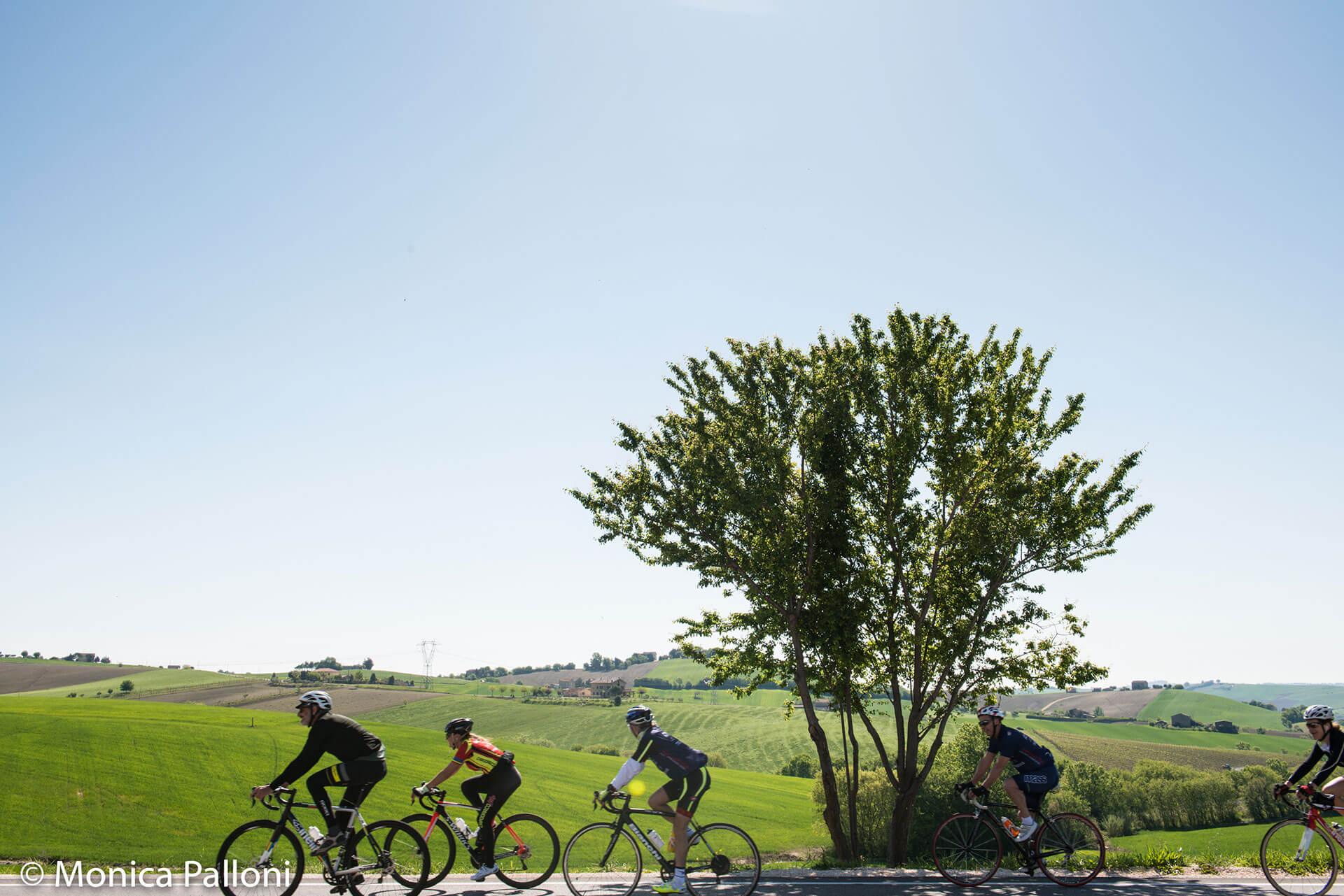 amante della mountain bike che corre a Pesaro